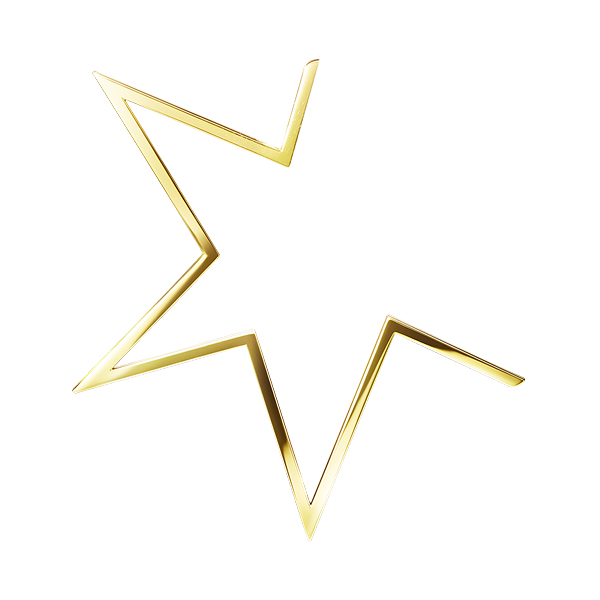 abstract star Earring