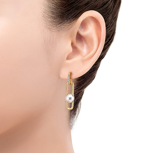 fine links Earrings
